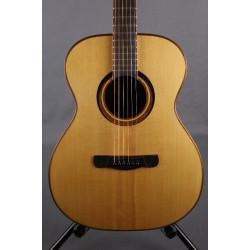 Guitar concert model MERIDA, steel strings, satin finish (C-350M)